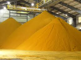 Distillers Dried Grains with Soluble (DDGS)