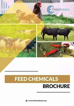 Chemtradeasia Feed Additives Chemicals Brochure PDF
